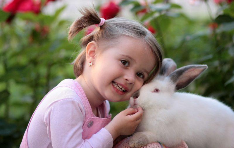 Mala-dziewczynka-z-krolikiem