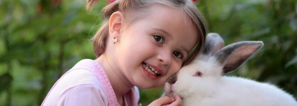 Dzieciaki i futrzaki – najlepsi towarzysze
